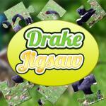 Drake Jigsaw